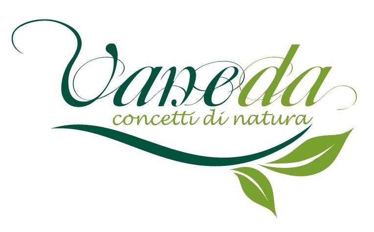 vaneda logo