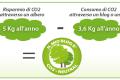 Il mio Blog è CO2-Neutral (ad impatto zero)