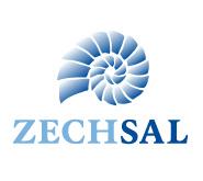 zechsallogo