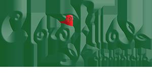 clorofilla-erboristeria-logo